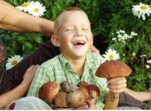 Признаки отравления грибами у детей: определите вовремя!